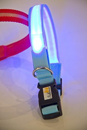 NEU Hundehalsband, -LR- LED mit neuem Lithium-AKKU, über 500x wieder aufladbar!!! , Das Leuchthalsband für ganz lange Zeit, nie mehr Batterien kaufen von PEDHOUSE (L, ROT) L: Halsumfang: 45-52cm - 5