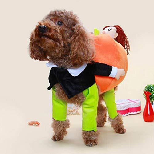 JOOFFF Halloween Haustier Outfit Hund Kürbis Party Kostüme Katze Kleidung für Halloween Party Festival Dekoration,L 35-40 cm