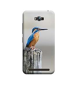 Ebby Premium Designer Back Cover for Asus Zenfone Max (Designer Case)
