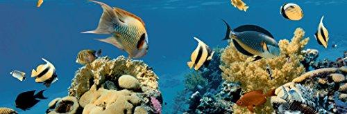 Set de 2/pi/èces estilker compo-aquarium d/écor/é de c/éramique avec impression num/érique