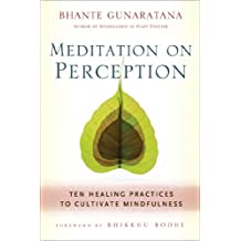 Meditation on Perception: Ten Healing Practices to Cultivate Mindfulness (English Edition)
