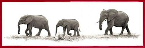 1art1® Elefantes Póster con Marco (Plástico) - The Elephants, Mario Moreno (91...