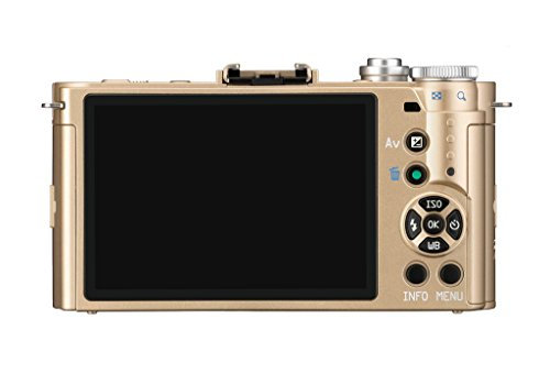 Pentax Q-S1 Compact System Camera - Gold (Zoom Lens Kit)