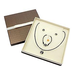 Berner Sennenhund, Satz Ohrringe, EIN Armband und Halskette mit Box, Foto-Schmuck, Handgefertigt