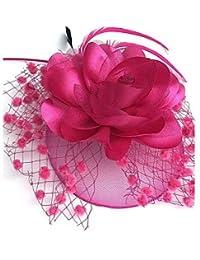 ABC-Sombreros y gorras Boinas   Piedra Preciosa y Cristal Tul Red  Fascinators d1841819d27