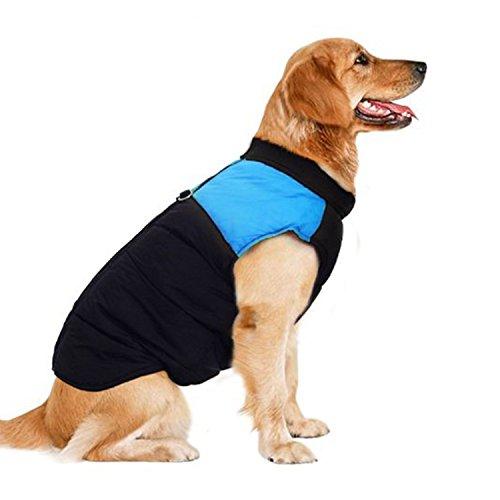 FanQube Winter kaltem Wetter Hund Kleidung Haustier Kostüm Hundemantel Jacke Gepolsterte Weste Skianzug, 3XL, Blau -
