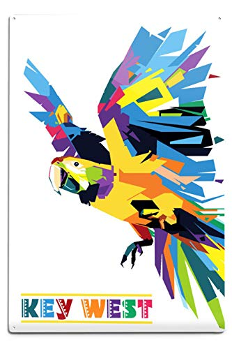 Lantern Press Key West - Ara - Vector géométrique 12 x 18 Metal Sign Multicolore