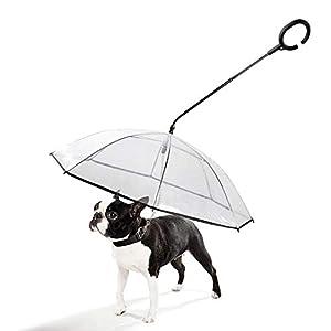 JIANXIN Parapluie pour Chien, Parapluie pour Chien avec Poignée en Forme De C Rétractable, Transparent Et Confortable avec Corde De Traction Mains Libres Hyène
