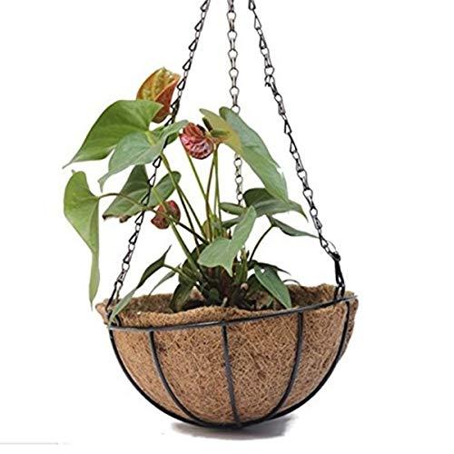 Oneriverspring40 Mini blumentopf Hängekorb for Pflanzen Garden Flower Planter mit Kette Blumentopf Home Balkon Dekoration 2 Stück-8 Zoll (Color : As pic)