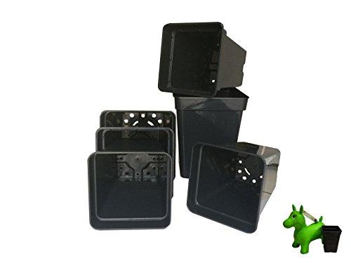 Vierkanttopf für die Vorzucht (10 Stück) viereckig Anzucht Topf verschiedene 4-Kant Topf viereckig (11x11cm - 1,0l)