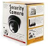 Gadgetbucket Mini Dummy Security With Motion Detector Sensor Camera Flashing Light.