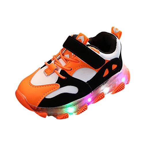 HDUFGJ Led Licht Leuchtende Laufsport Schuhe Kinderschuhe Jungen Mädchen Schuhe Weiche Sohle Antirutsch Luftdurchlässig Leuchtschuhe Klettverschluss Turnschuhe26 EU(Orange)