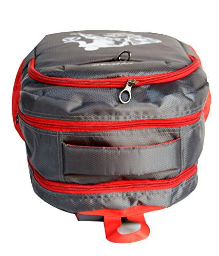 DREAMZ STYLISH 28 Ltrs Grey + Red Casual Backpack I Laptop Bags (Grey)