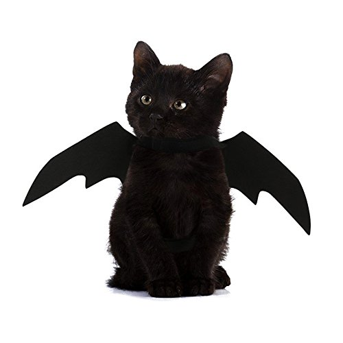 FLAdorepet Halloween Pet Hund Bat Wings Katze Fledermaus Kostüm