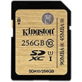 Kingston SDA10/256GB - Tarjeta SD profesional de 256 GB (UHS-I SDHC/SDXC clase 10)