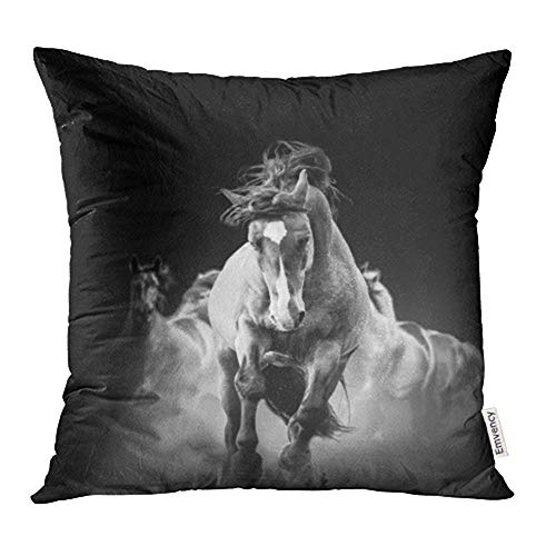 züge, Throw Pillow Cases Covers Black Mustang Wild Horses Running in The Dark Dust Animal Run Movement Motion Print Pillowcases 18