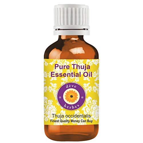 Huile essentielle pure de Thuja (Thuja occidentalis) Deve Herbes 100% naturelle, de qualité thérapeutique, distillée à la vapeur 10ml (0,33 oz)
