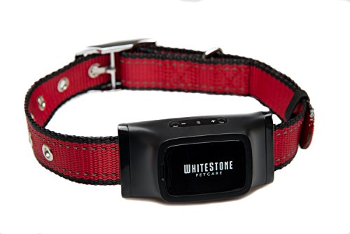 Das Bellkontroll-Halsband von Whitestone Petcare - | Rot | 1 Jahr Qualitätsgarantie | Ein automatisches anti bell Gerät für bellende Hunde, mit fortschrittlicher Bellerkennungstechnologie | Verstellbare und ergonomische Halsbänder passend für alle Hunde; Klein, Medium und Groß | Haustierfreundliches Design erzeugt Sound und Vibration, kein Spray oder Elektroschock |