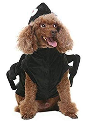 BINGPET Halloween-Kostüm für Hunde, Schwarz, Small