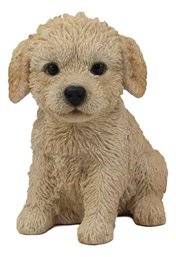 adoodle-Welpe, 16,5 cm hoch, Haustier Pal Golden Retriever und Pudel Mutt Hund Rasse lebensechte Hund Sammlerfigur aus Kunstharz mit Glasaugen ()