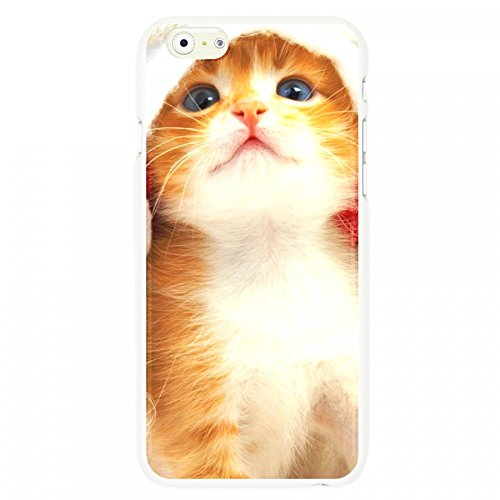 OnlineBestDigital - Animal Pattern Hardback Case / Housse pour Apple iPhone 6 Plus / 6S Plus (5.5)Smartphone - Tiger Cute Cat