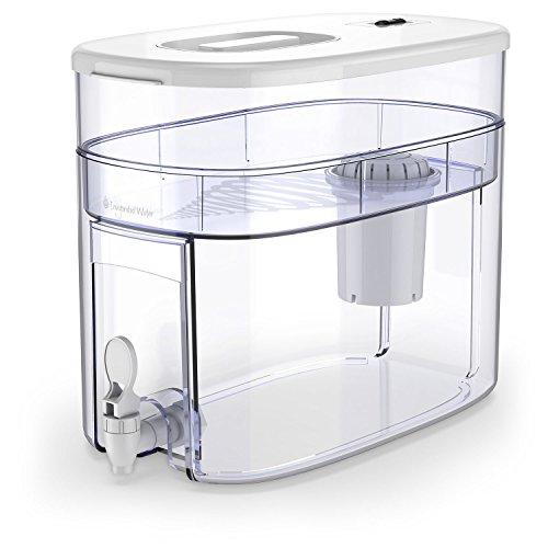 pH RECHARGE 1F - Sistema depurador e ionizador de mesa - Con filtro para alcalinizar agua - Blanco - 12,5 l