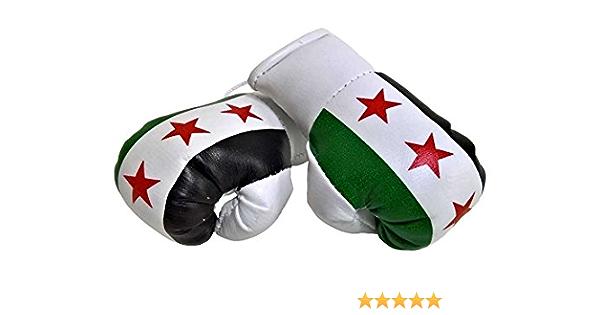 Sportfanshop24 Mini Boxhandschuhe Syrien 1 Paar 2 Stück Miniboxhandschuhe Z B Für Auto Innenspiegel Auto