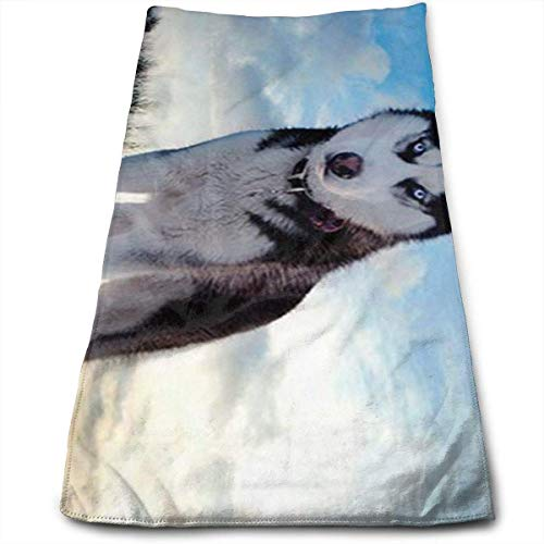 Strandtücher, Sports Towel, Hand Towels, Husky Huskie Dogs Multi-Purpose Microfiber Towel Ultra Compact Super Absorbent and Fast Drying Travel Towel Beach Towel Perfect for Camping, Gym, Swimming.