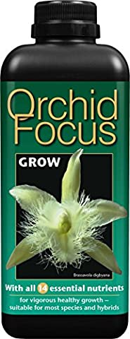 Orchid Focus Grow 1