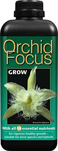 Orchid Focus Grow, 1 litro