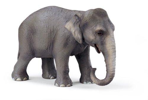 SCHLEICH 14344  - Wild Life, Asiatische Elefantenkuh thumbnail