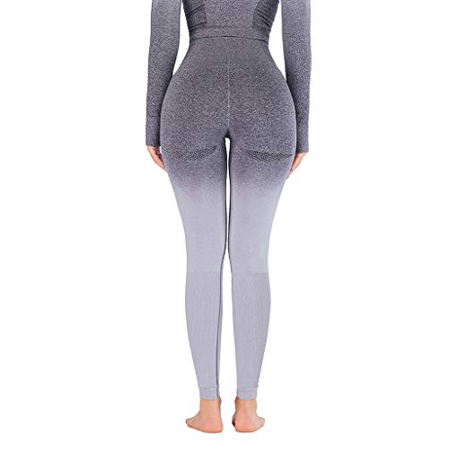 Leggings Damen ABsoar Sport Yoga Leggings Kompression Slim Hosen Jogginghose Nahtlose Leggings Fitness Lange Hosen Gamaschen Strumpfhosen (Grau,XL)