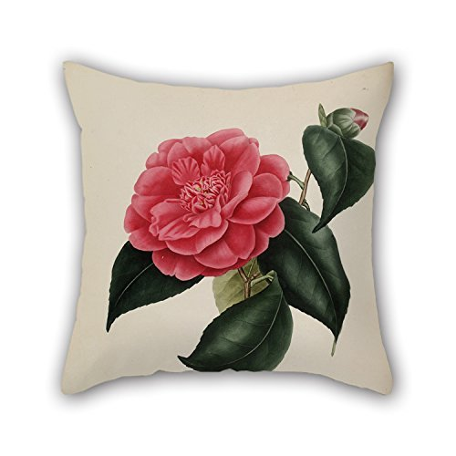beautifulseason 18 X 18 Inches/45 by 45 cm Flower Throw Cushion Covers,Two Sides Ornament and Gift to Relatives,Living Room,Christmas,Indoor,her,Pub - Cottage Bed-twin Bed