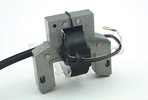Spule Elektronische Zündung Briggs & Stratton Code 298502 (Acme Motor)