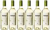 Salentein Portillo Bodegas Sauvignon Blanc 2018 trocken (6 x 0.75 l)