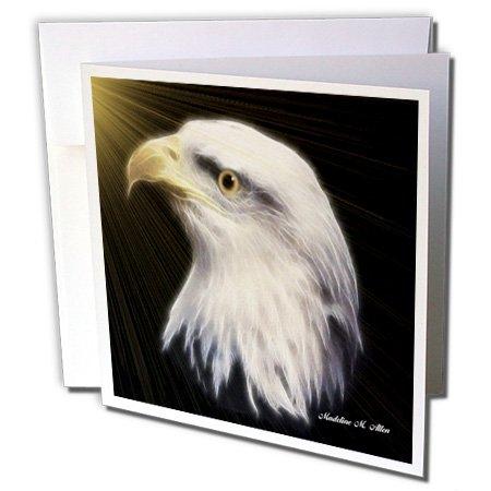 3dRose gc_8391_2 Grußkarten, Motiv American Bald Eagle, 15 x 15 cm, 12 Stück -