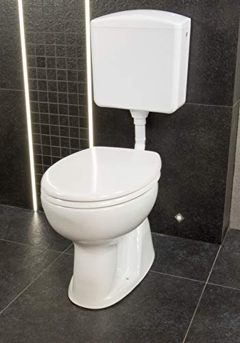 chlamydien toilettensitz