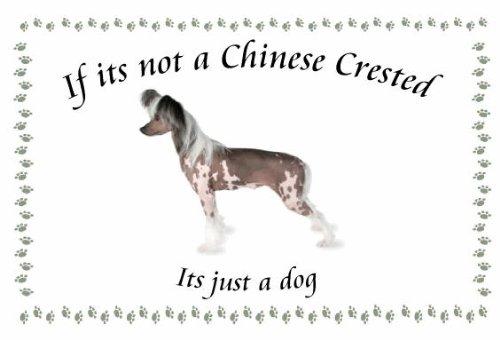 Chinesischer Schopfhund-Neuheit Hund Schlüsselanhänger-Wenn es nicht -