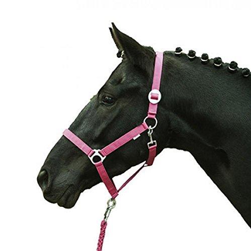 HKM 27868045.0758 Halfter -Stars Economy Softice- Shetty, Neon pink