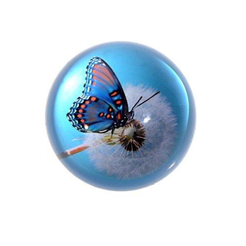 H&D Briefbeschwerer mit Kristallglasur und Schmetterlingsmotiv, Glas, Blau 1, 80 mm