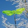 Sonnenfänger - Sun Dancer SCHMETTERLING 220 grün - wetterfest, lichtreflektierend - Acrylscheibe: Ø22cm - inkl. Kegelzapfen und Nylonschnur zum Hängen von Colours in Motion - Du und dein Garten