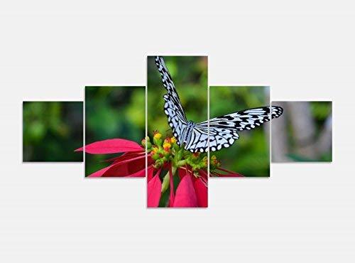 Leinwandbild 5 tlg. 200cmx100cm weißer Schmetterling rote Blume Bilder Druck auf Leinwand Bild Kunstdruck mehrteilig Holz 9YA561, 5Tlg 200x100cm:5Tlg 200x100cm