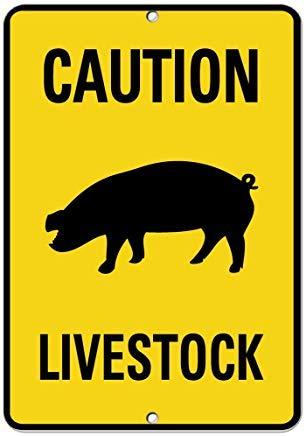 Vivityobert Señal de Actividad de Cerdo Ganadero con Advertencia de Advertencia de Metal de Aluminio para casa, 300 mm x 200 mm
