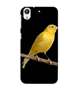 HTC DESIRE 626 + BIRD Back Cover by PRINTSWAG