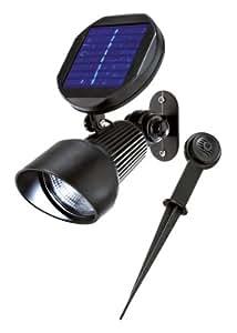 Esotec Spot solaire Ampoule LED Spotlight blanc froid noir