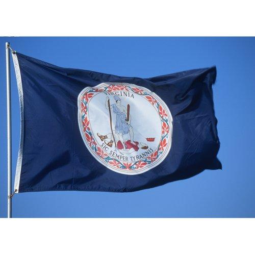 Allied Flagge, Nylon, Virginia State Flagge, 91 x 152 cm, lebendige Farben und farbecht, verstärkter Saum und Messingösen -