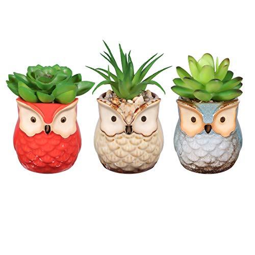 OUNONA 3 STÜCKE Künstliche Sukkulenten Pflanzen/Mini kunststoffpflanzen,für Home Bath Büro Regal Dekoration (Herzstück Kranz)