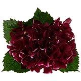 Flores Plantas Hortensia Ramo Artificial Seda Decoración Banquete Boda - Púrpura