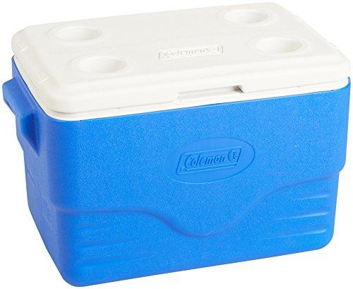 Coleman 6281A718G Kühlbox Poly-lite, 34 Liter (57 x 35… | 00076501378177
