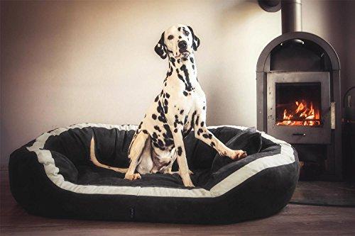 tierlandor-poivre-pe4-02-orthopedique-pour-chien-lit-canape-pour-chien-graphite-110-dans-l-mega-en-d